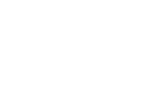 Vintage Festival - Buy your place now