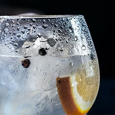 A glass of gin garnished with peppercorns and a slice of orange
