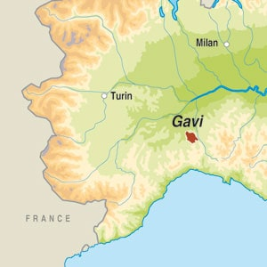 Map showing Gavi DOCG